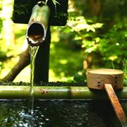 fontana zen