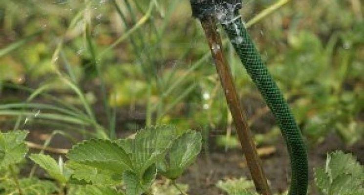 Accessori irrigazione impianto irrigazione accessori for Accessori irrigazione