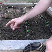 Un classico sistema di irrigazione a goccia