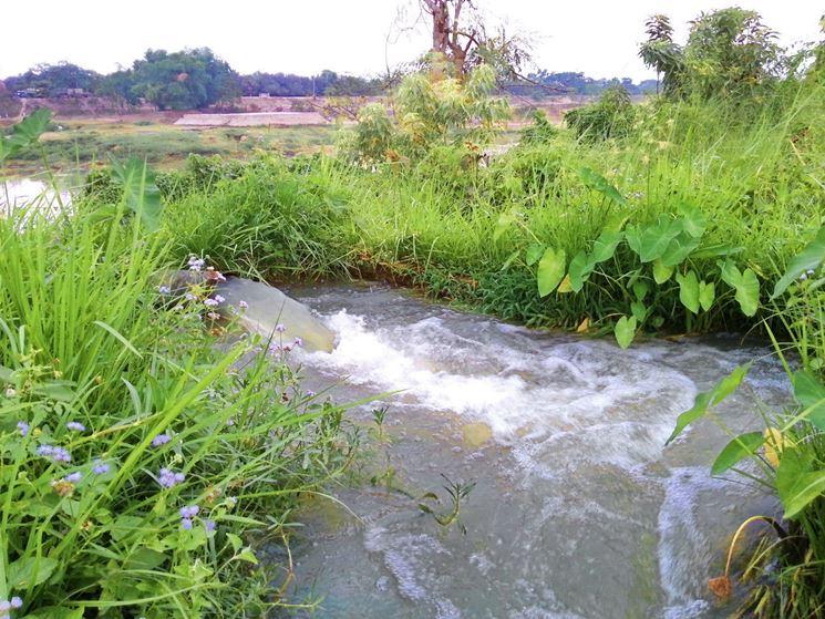 acque per irrigazione