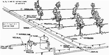Sistema impianto irrigazione a goccia