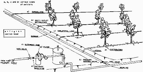 Sistema irrigazione a goccia termosifoni in ghisa scheda for Gocciolatori per irrigazione a goccia