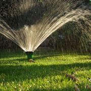 Un classico impianto di irrigazione a cipolla.