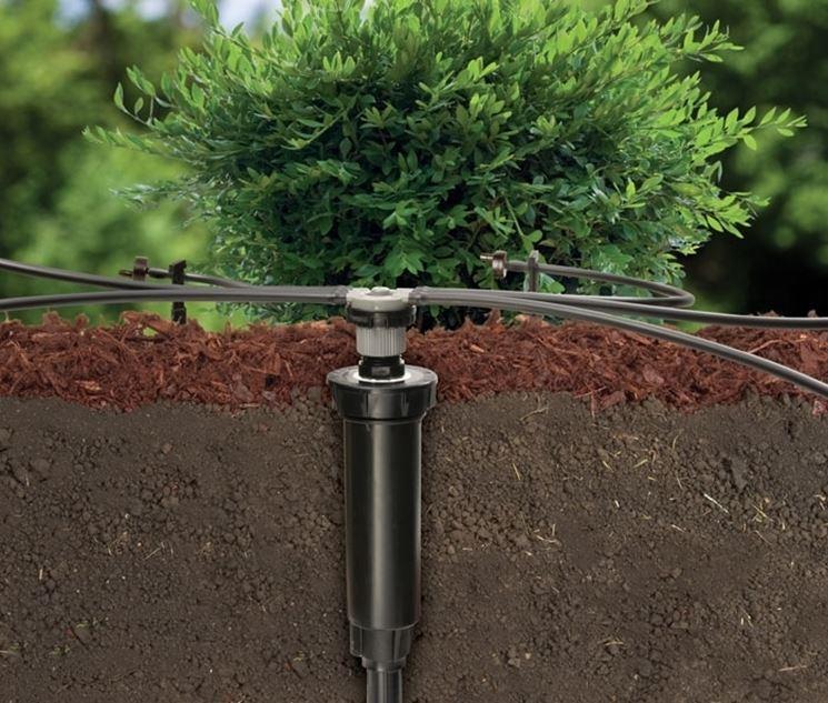La sezione di un classico irrigazione