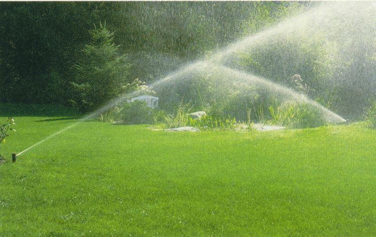 Un perfetto sistema di irrigazione fai da te