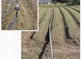 Impianto irrigazione fuori terra