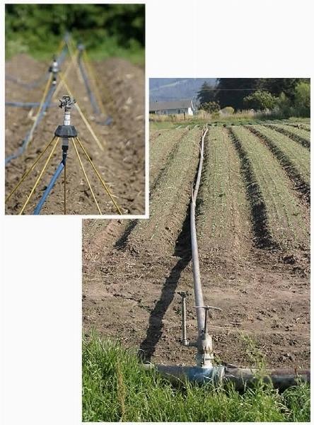 Impianto Irrigazione Fuori Terra Impianto Irrigazione