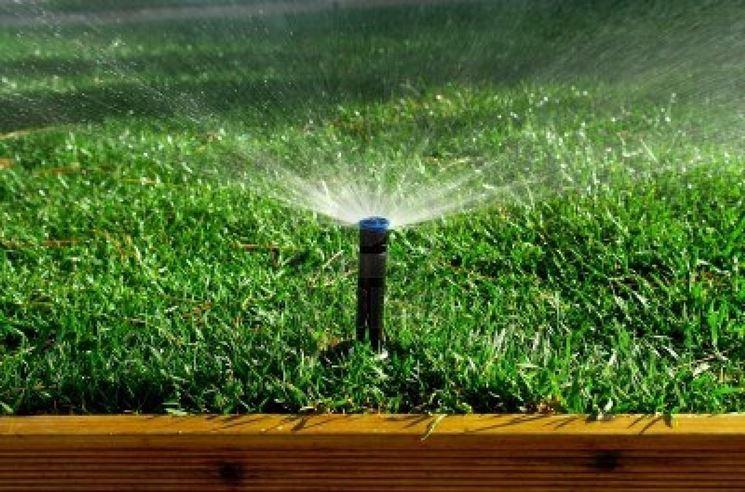 Timer irrigazione prezzo