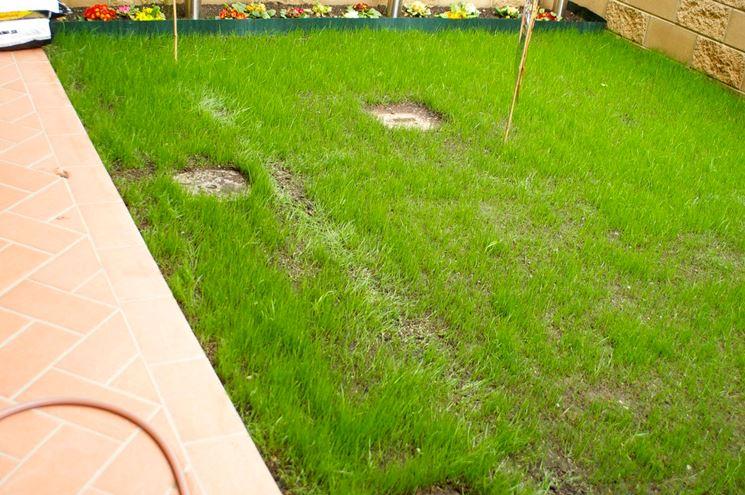 Impianto irrigazione giardino impianto irrigazione for Irrigatori automatici per giardino