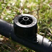 Un piccolo orto con irrigazione a goccia