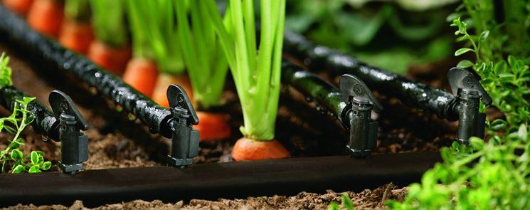 Un sistema di irrigazione per l'orto a goccia