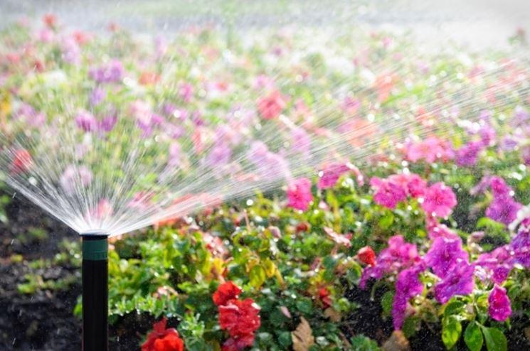 Un irrigatore da giardino in funzione.