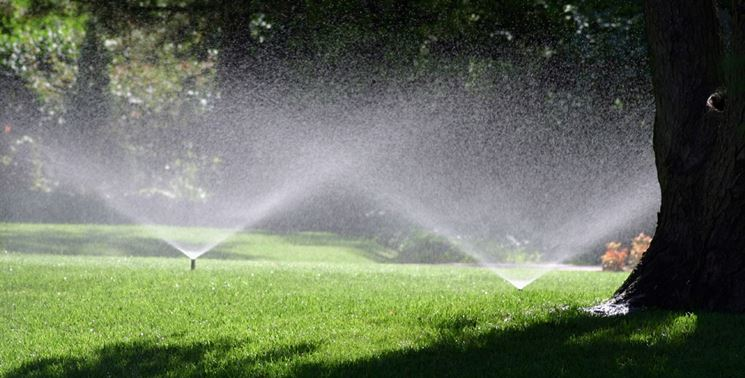Un prato irrigato in modo automatico.