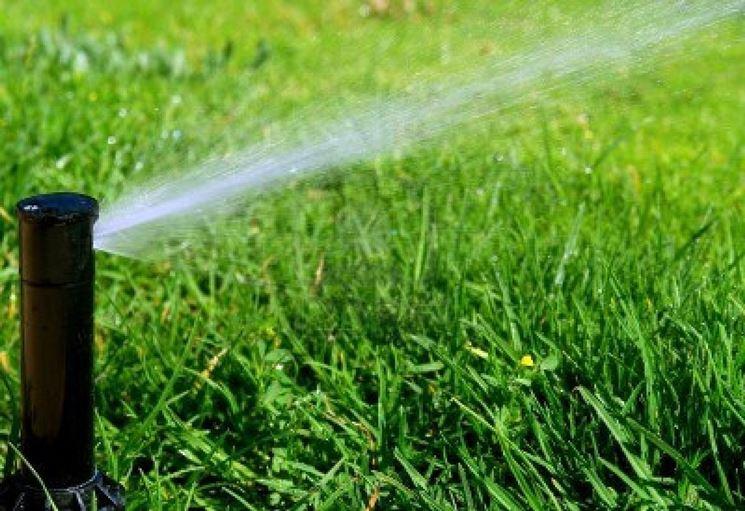 Irrigazione giardino fai da te impianto irrigazione for Irrigazione giardino
