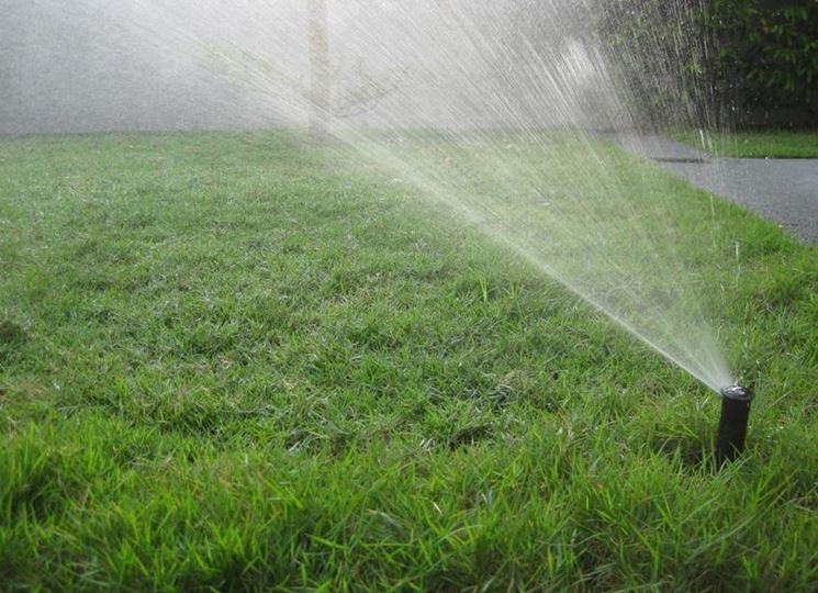 Un classico irrigatore pop up posizionato in un angolo