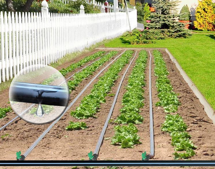 irrigazione giardino - impianto irrigazione - sistema di ... - Progettare Irrigazione Giardino