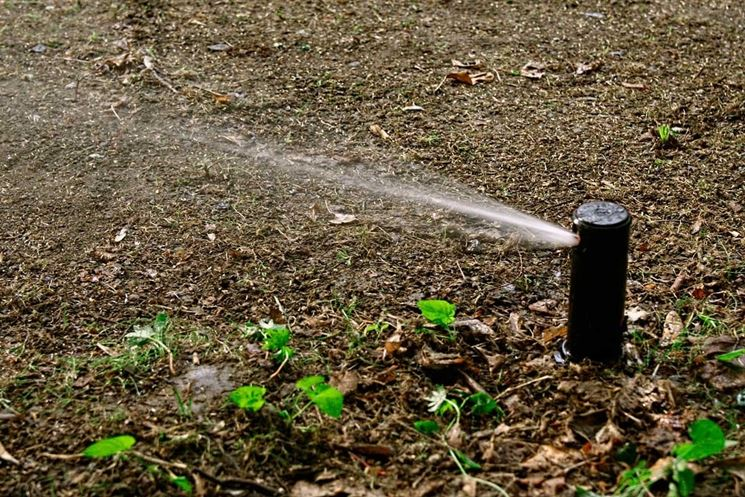 Irrigazione a pioggia