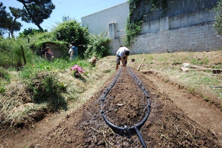 irrigazione orto impianto irrigazione irrigare l 39 orto