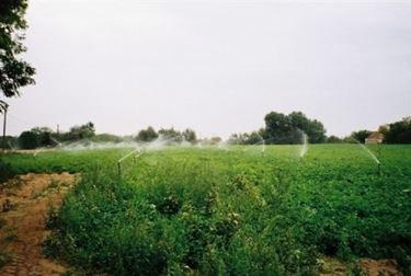 microirrigatori in campo