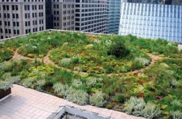 Un giardino con impianto di irrigazione