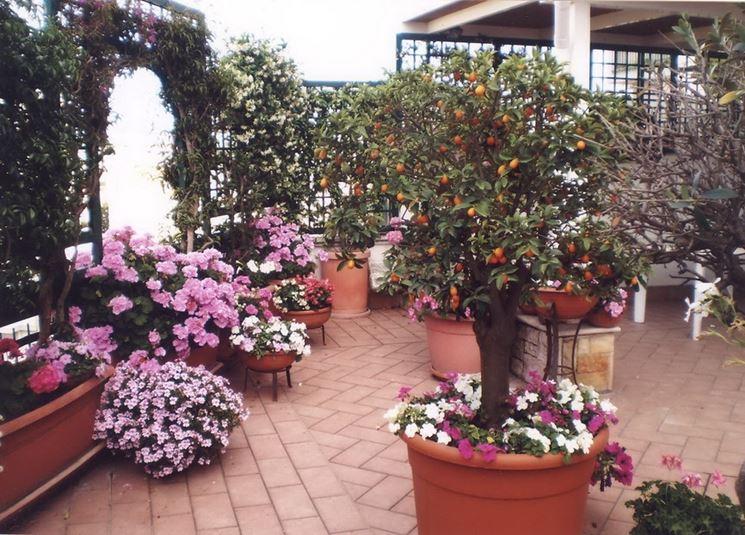 Terrazza fiorita