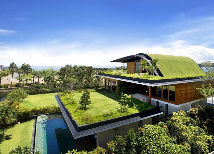il giardino creato sul tetto