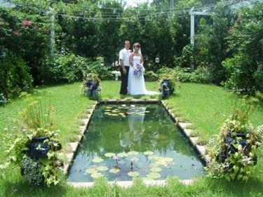 piscina con sposi.