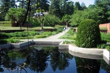 piscina in giardino.