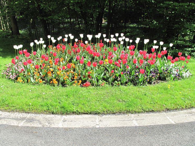 Aiuole giardino progettazione giardini come progettare for Giardini e aiuole