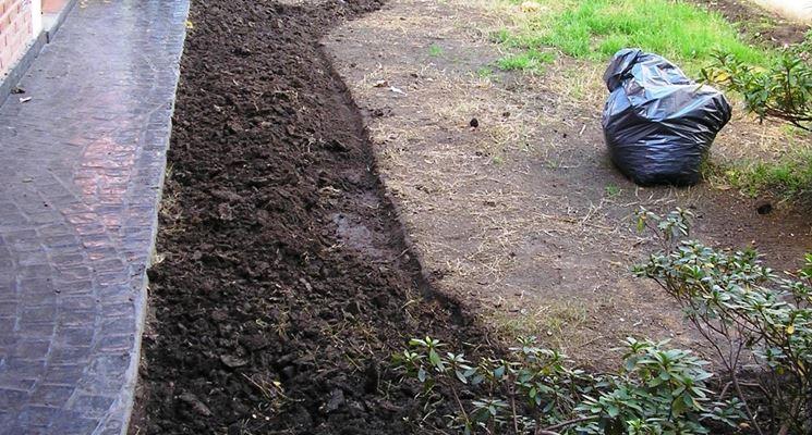 Inizio lavori piccolo giardino