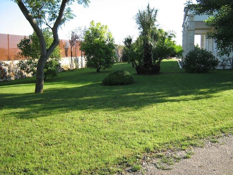 creazione giardini privati progettazione giardini come