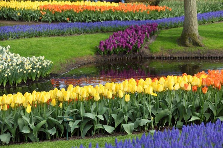 Giardini da realizzare progettazione giardini for Giardino fiorito