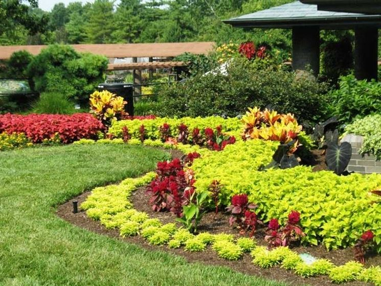 Giardini di casa progettazione giardini curare il - Foto di giardini fioriti ...