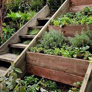 Soddisfazione e relax nella realizzazione di giardini fai da te