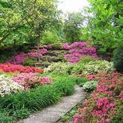 Un esempio di giardino fiorito