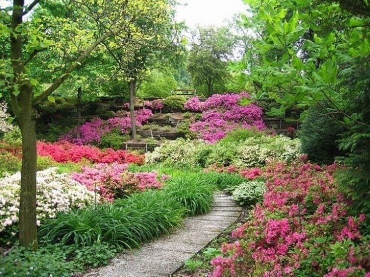 Giardini fioriti immagini progettazione giardini - Giardini terrazzati immagini ...