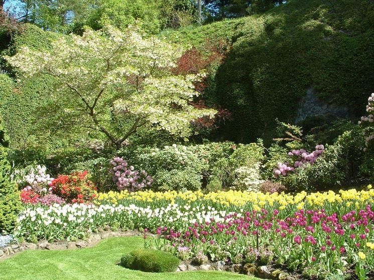 Giardini fioriti progettazione giardini fiori in giardino for Giardino fiorito