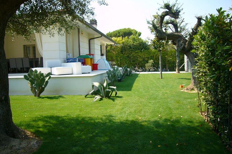 Progettazione giardini privati bf41 pineglen for Laghetto balneabile progetto