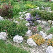 Giardino roccioso a effetto naturale
