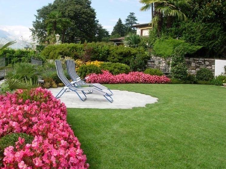 giardino oleandro rosa