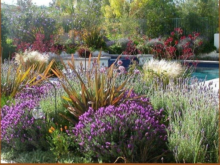Essempio di giardino mediterraneo