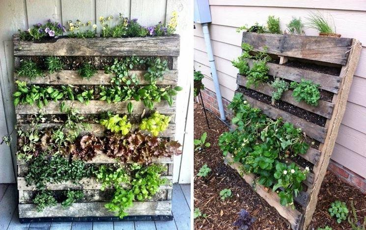 Giardino verticale di bancali