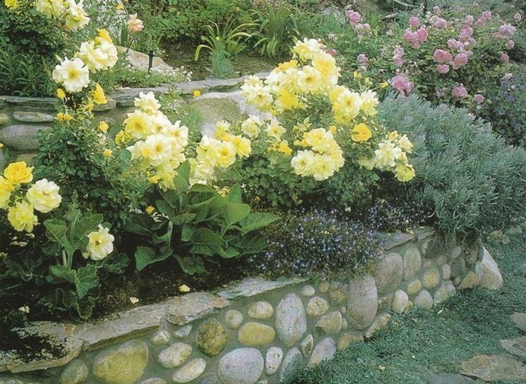 Muretti per giardini progettazione giardini - Muretti per giardino ...