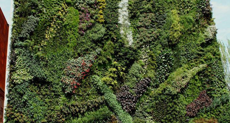 Realizzare giardini verticali   progettazione giardini   come ...