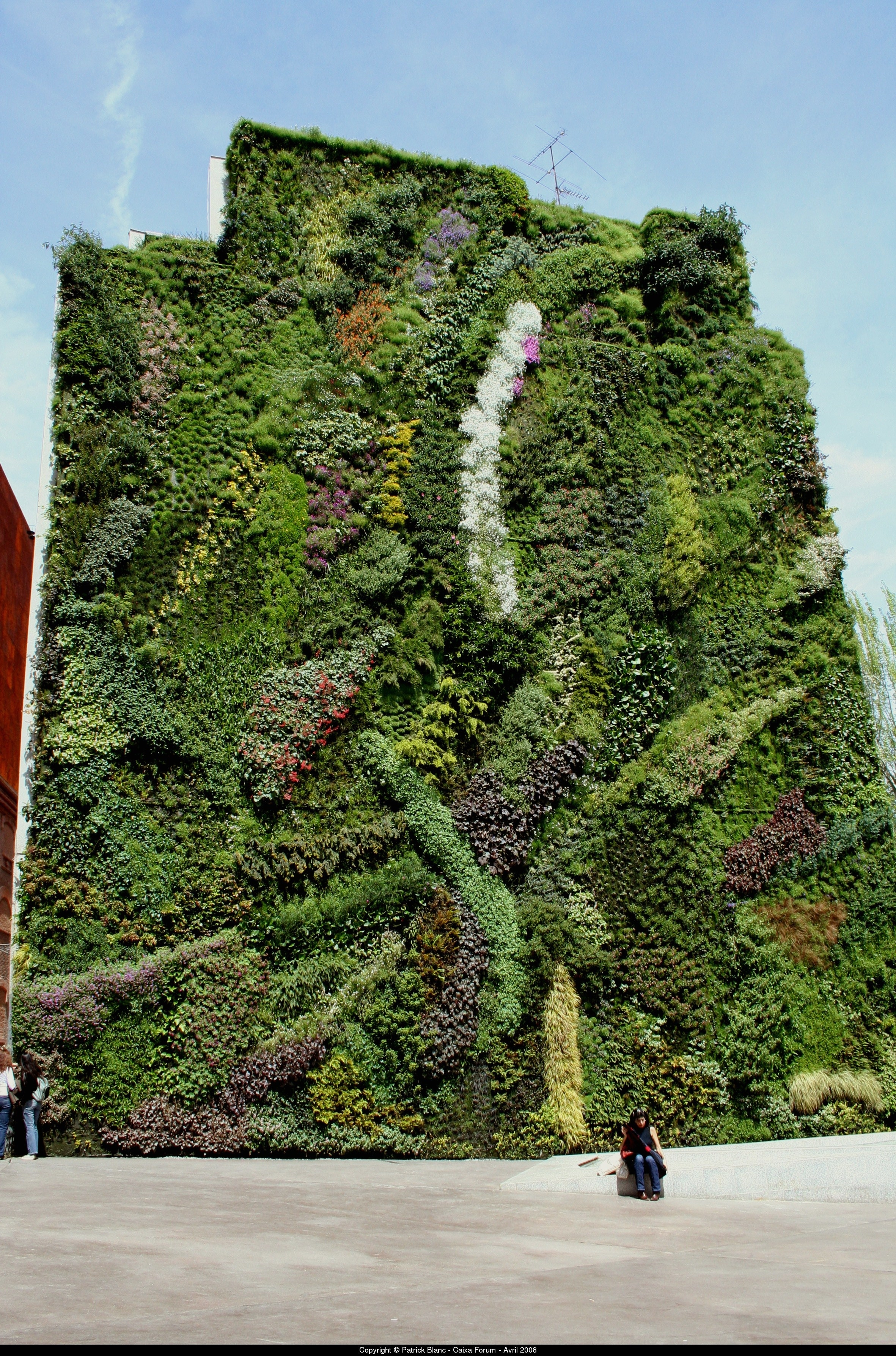 Realizzare giardini verticali progettazione giardini for Jardin vertical caixaforum madrid