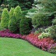 costruire giardini