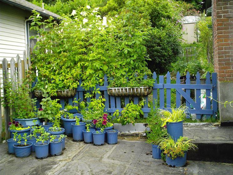Angolo di giardino con piante in vaso