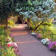 Vialetto con aiuole fiorite