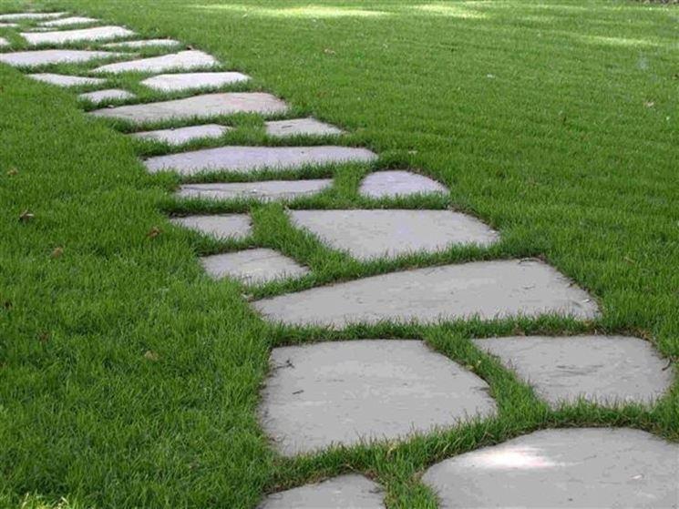 Un vialetto con pietre