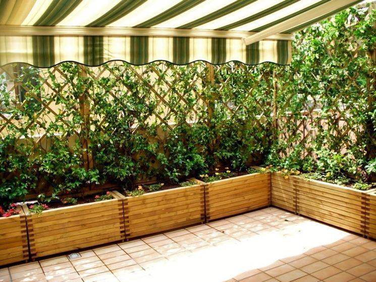 Piante per fioriere esterne idea creativa della casa e for Opzioni esterne della casa